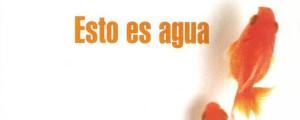 Esto Es Agua, david foster wallace