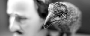 el cuervo, edgar allan poe, neil gaiman